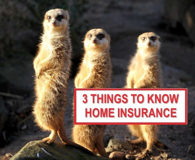 3 Things to Know Home Insurance